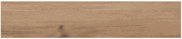 Płytka LENARO HONEY 19,3x120,2