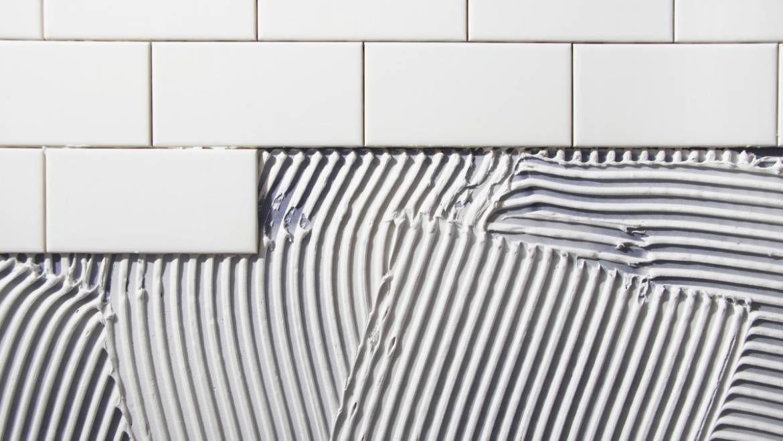 Jaki rodzaj płytek wybrać do łazienki?